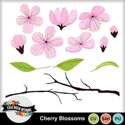 Lisarosadesigns_cherryblossoms