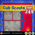 Blue___gold_cubs_temp-001_small