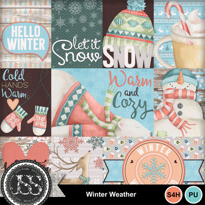Winter_weather_pocket_cards