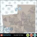 December_fun_temp-001_small