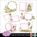 Tender_as_a_rose_cluster_frames_small