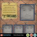 Field_of_dreams_temp-001_small