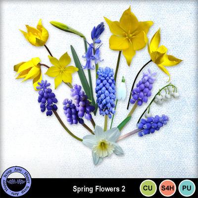 Springflowerscu2