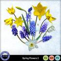 Springflowerscu2_small