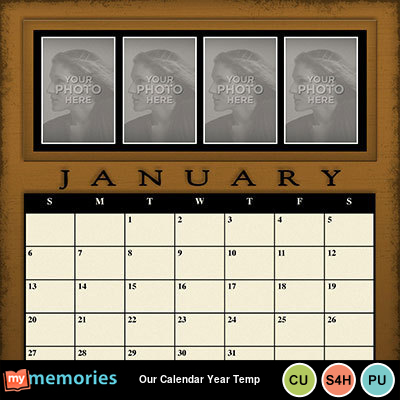 Our_calendar_year_temp-001