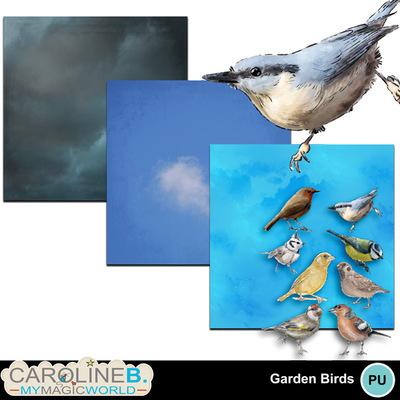Garden-birds-mini_1
