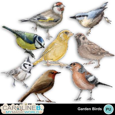 Garden-birds-mini_2