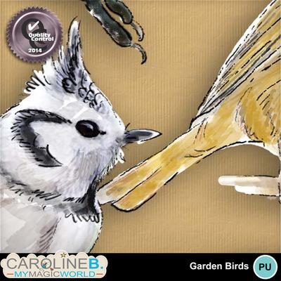 Garden-birds_2