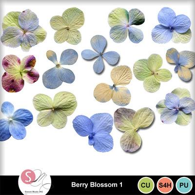 Berry_blossom1
