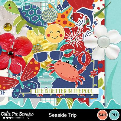Seaside_trip3
