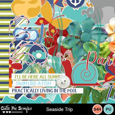Seaside_trip4