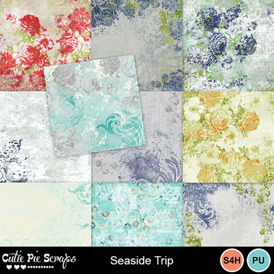 Seaside_trip10