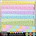 Prev-springpapercollection-6-1_small