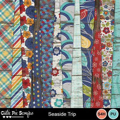 Seaside_trip9