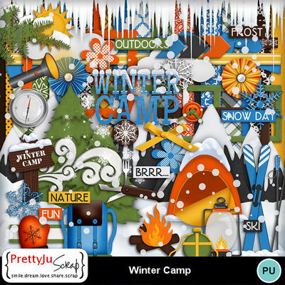 Winter_camp1