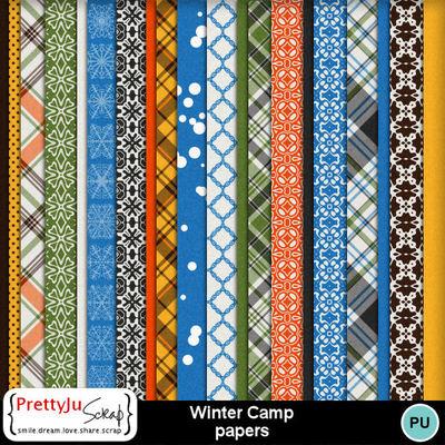Winter_camp_pp
