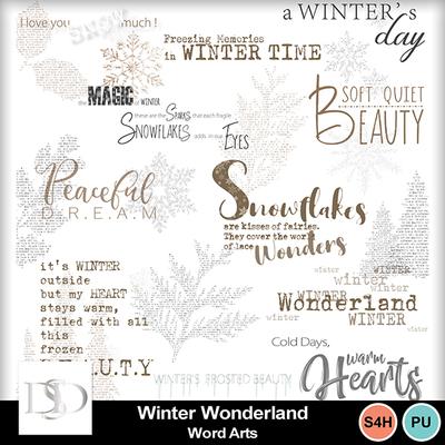 Dsd_winterwonderland_wa