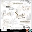 Dsd_winterwonderland_wa_small