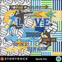 Mgx_sr_sportsfan_volleyball_small