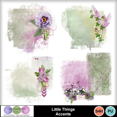 Little_things_accents-1