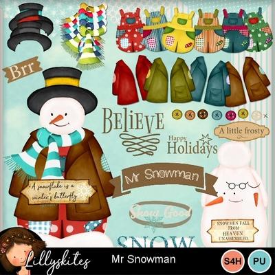 Mr_snowman_1