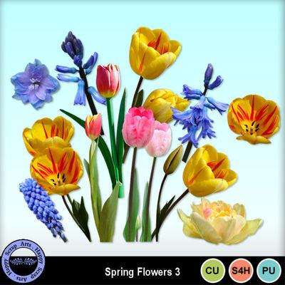 Springflowerscu3