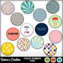 Crazy_summer_pins_small
