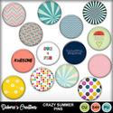 Crazy_summer_pins_small