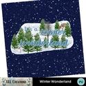 Winter_wonderland-01_small