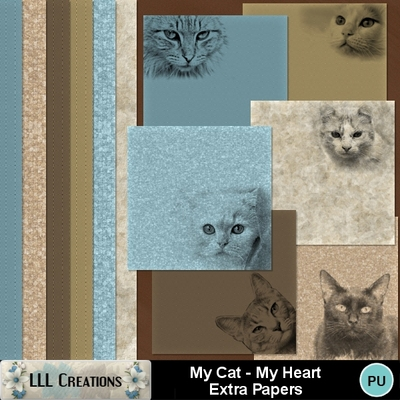 My_cat_-_my_heart_extra_papers-01