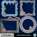 Denim_rose_frames-01_small