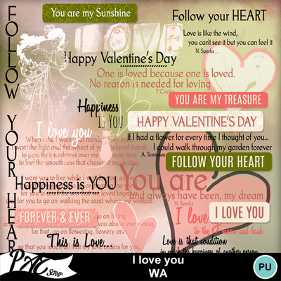 Patsscrap_i_love_you_pv_wa