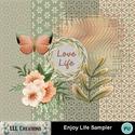Enjoy_life_sampler-01_small