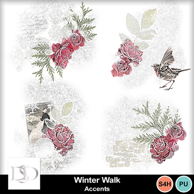 Dsd_winterwalk_accents