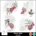 Dsd_winterwalk_accents_small