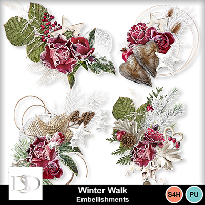 Dsd_winterwalk_embell