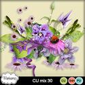 Msp_cu_mix30_pvmms_small