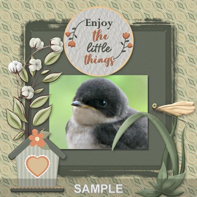 Enjoy_life_bundle-016