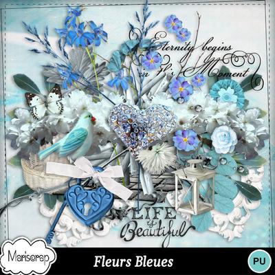 Msp_fleurs_bleues_pv_mms