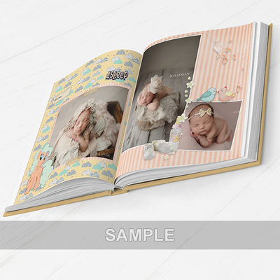 Pages_2-3