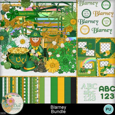 Blarney_bundle1-1