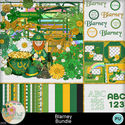 Blarney_bundle1-1_small