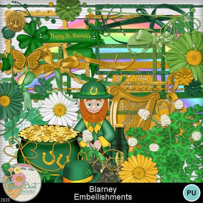 Blarney_embellishments1-1