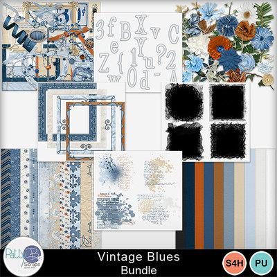 Pbs_vintageblues_bundle