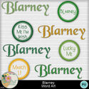Blarney_wordart1-1_small