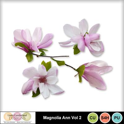 Magnolia_ann_vol2-1