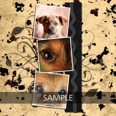 My_one_and_my_only_dog_12x12_photobook-007_copy