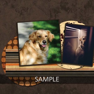 My_one_and_my_only_dog_12x12_photobook-011_copy