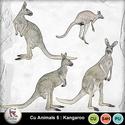 Pv_kangaroo_small