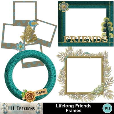 Lifelong_friends_frames-01